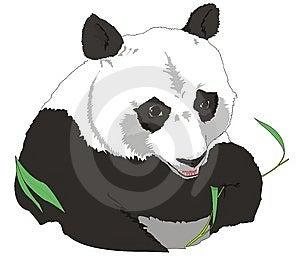 Panda Royalty Free Stock Image - Image: 8229936