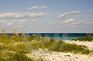 Beautiful Beach With Foreground Stock Images - Image: 8232714