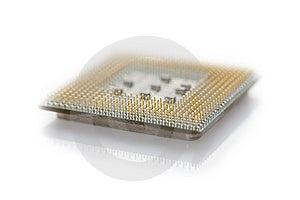 Macro CPU Stock Image - Image: 8236501