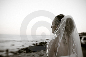 Young Bride Gazing Into The Distance Stock Photos - Image: 8236743