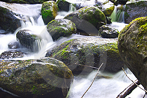 Rapids Royalty Free Stock Images - Image: 8237789
