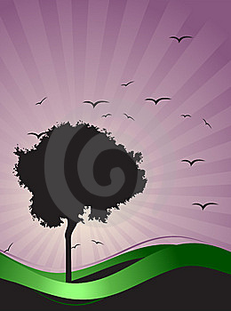 Old Tree Silhouette, Season Background Stock Image - Image: 8241421