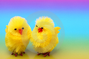 Easter Chickens On Colorful Background Stock Photography - Image: 8259282