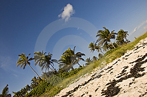 Blue Sky And A Fluffy Cloud On The Beach Royalty Free Stock Image - Image: 8262946