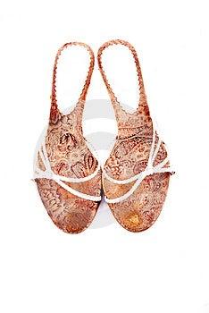 Women Summer Shoes Stock Photos - Image: 8264513