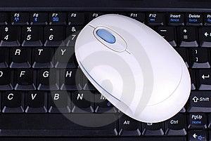 шток фото мыши клавиатуры Стоковое Изображение - изображение: 8269981