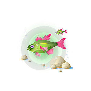 Fish Royalty Free Stock Photo - Image: 8270825