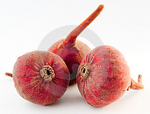 Three Figs Stock Photography - Image: 8272392