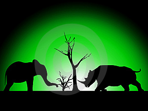 Elephant And Rhino Silhouette Royalty Free Stock Images - Image: 8277769
