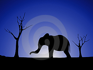 Elephant Silhouette 2 Royalty Free Stock Photos - Image: 8277778