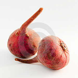 Pair Of Figs Stock Photos - Image: 8278103