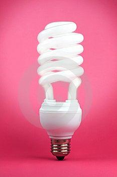 Spiral Bulb Stock Image - Image: 8284771
