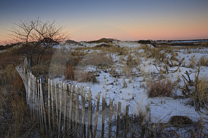 Snowy Sand Dunes At Sunrise Stock Image - Image: 8285871