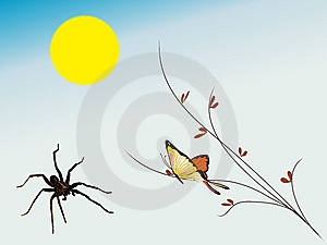 Spider And Butterfly Stock Images - Image: 8285884