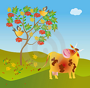 A Cow Looks At A Wild Ash Stock Images - Image: 8291004