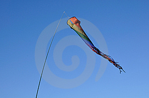 A Colored Vane Stock Images - Image: 8295314