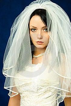 Melancholic Bride Stock Image - Image: 8301911