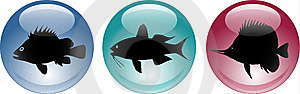 3d Glassy Shiny Sea Fish Icons Stock Photography - Image: 8312532