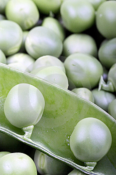 Green Pea Stock Photo - Image: 8313900