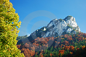 Autumn Summer Hill Landscape Royalty Free Stock Photography - Image: 8316087