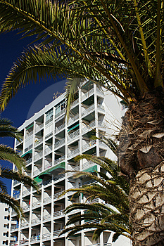 Hotel And Palm Trees Royalty Free Stock Photography - Image: 8322747