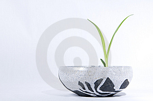 Pot And Leaf 1 Stock Photography - Image: 8324122