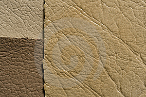 Ochri Brown  Leather Stock Images - Image: 8324304