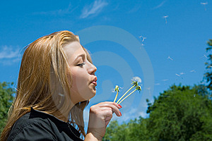 Girl And Dandelion Royalty Free Stock Images - Image: 8326869