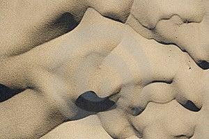 含沙的背景 免版税图库摄影 - 图片: 8337847