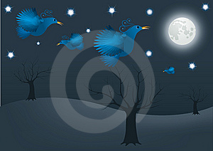 Night Bird Royalty Free Stock Photos - Image: 8338948