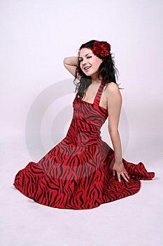 Seductive Pin-up Girl Stock Photos - Image: 8342413
