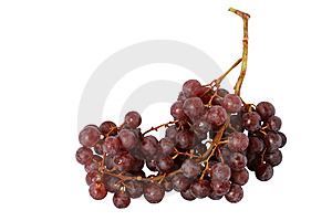 Bunch Of Grapes Stock Photos - Image: 8343723