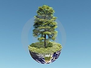 Single Tree On Earth Stock Photography - Image: 8344702