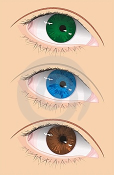 Vector Eye Stock Photo - Image: 8349470
