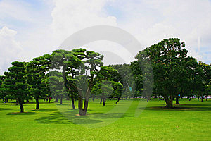 Japan's Imperial Palace Lawn Outside The Court Royalty Free Stock Image - Image: 8352276