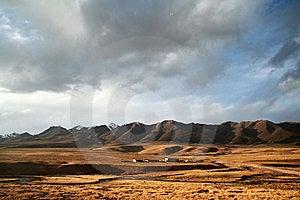 Golden Plateau Stock Image - Image: 8354141