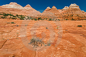 Coyote Buttes Royalty Free Stock Image - Image: 8357096