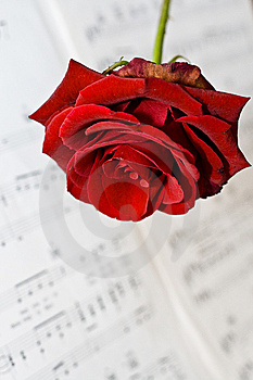 Music, Valentine and Love Royalty Free Stock Photo