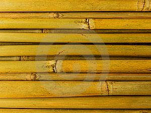 Bamboo Stalks Royalty Free Stock Photos - Image: 8357588