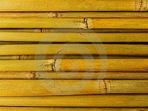 Bamboo Stalks Royalty Free Stock Photos - Image: 8357588