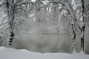 The Snowfall. Royalty Free Stock Images - Image: 8363499