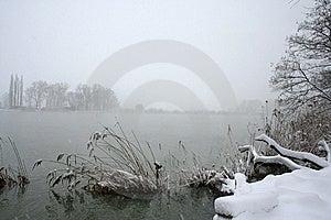 The Snowfall. Royalty Free Stock Photos - Image: 8365398