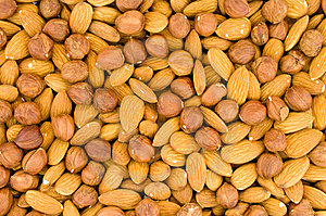 Almonds And Filbert Stock Photo - Image: 8372860