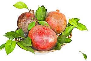 Fresh Pomegranates Stock Image - Image: 8375321