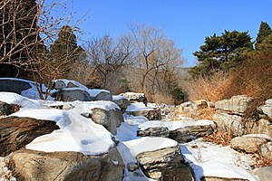 Winter Park In Snow Stock Photography - Image: 8376802