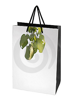 Paper Bag Royalty Free Stock Photos - Image: 8377748