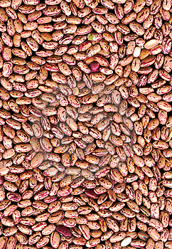 Beans Stock Images - Image: 8383164