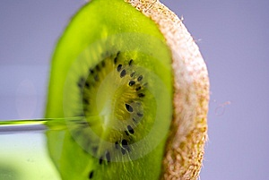 Kiwi On A Cup Stock Photography - Image: 8387522