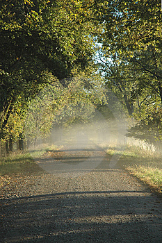 Country Road Morning Royalty Free Stock Image - Image: 8387916