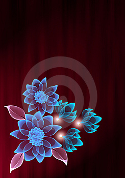 Transparent flower Stock Photography